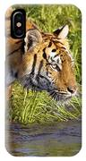 Tiger Standing In Water IPhone Case