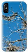 Time To Nest IPhone Case