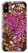 Tlm Of Chondrite IPhone Case