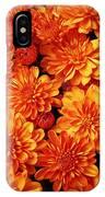 Toasted Orange Chrysanthemums IPhone Case