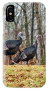 Tom Turkeys All In A Row 1 IPhone Case