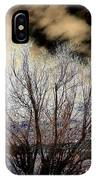 Touch Of Frost IPhone Case