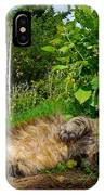 Toufan IPhone Case