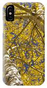 Towering Autumn Aspens With Deep Blue Sky IPhone Case