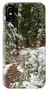 Trail Through Snow-decked Redwood Grove IPhone Case