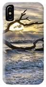 Treasures Of The Sea IPhone Case