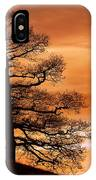 Tree Against A Sunset Sky IPhone Case