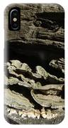 Tree Growth IPhone Case