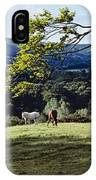 Tree In A Field, Great Sugar Loaf IPhone Case
