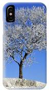 Tree In Winter, Co Down, Ireland IPhone Case
