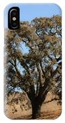 Tree In Winter IPhone Case