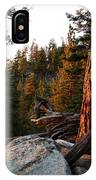 Tree Reflections IPhone Case
