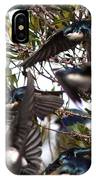 Tree Swallow - All Swallowed Up IPhone Case