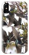 Tree Swallow Frenzy IPhone Case