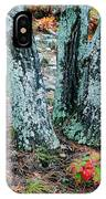 Tree Trio In Lichen At Hawn State Park IPhone Case
