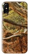 Tree Woods IPhone Case