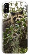Treed IPhone Case