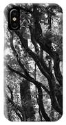Trees Beautiful Trees IPhone Case