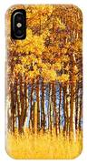 Trees In Autumn IPhone Case