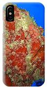 Tropical Fish Stone-fish IPhone Case