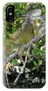 Tropical Iguana IPhone Case