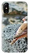 Trumpeter Finch IPhone Case