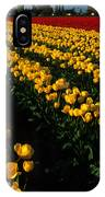 Tulip Fields Forever IPhone Case