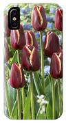Tulip Tulipa Sp Key West Variety Flowers IPhone Case