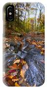 Tumbling Leaves IPhone Case