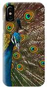 Turquoise And Gold Wonder IPhone Case