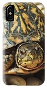 Turtle With Red Eyes On Rocks IPhone Case
