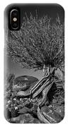 Twisted Beauty - Bw IPhone Case
