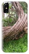 Twisted Tree 1123 IPhone Case