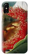Two Australian Honey Possums Feed IPhone Case