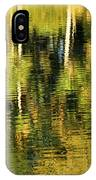 Two Palms Reflected In Water IPhone Case