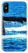 Two Whale Tails IPhone Case