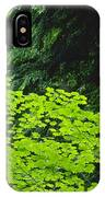 Umbrella Of Trees In Forest IPhone Case