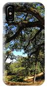 Under The Oak Canopy IPhone Case