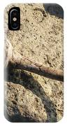 Unusual Driftwood IPhone Case