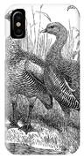 Upland Geese IPhone Case