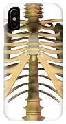 Upper Torso Bones, Artwork IPhone Case