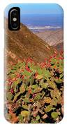 Valle Del Desierto IPhone Case