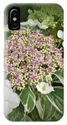 Variegated Lace Cap Hydrangea - Pink And White IPhone Case