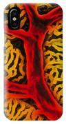 Vascular System Of The Epididymis IPhone Case