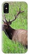 Velvet Bull Elk IPhone Case