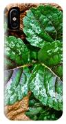 Vibrant Ground Cover  IPhone Case
