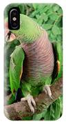 Vinaceous-breasted Parrot Amazona IPhone Case