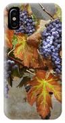 Vineyard Splendor IPhone Case