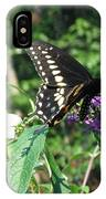 Visit From A Black Swallowtail IPhone Case