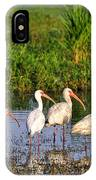 Wading Ibises IPhone Case